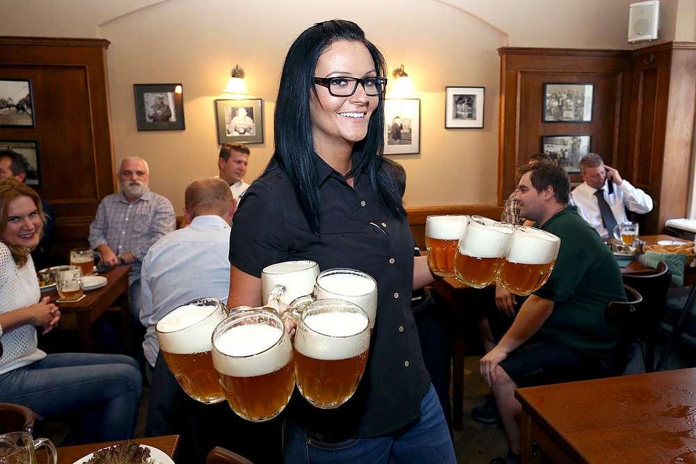 Vaření piva v Plzni