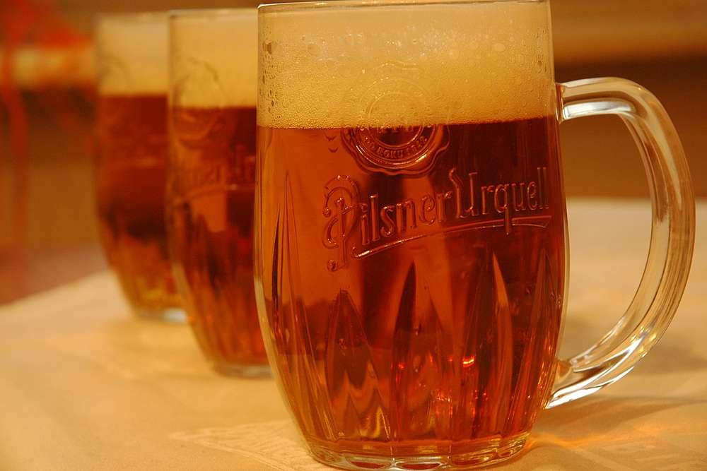 Beer Voucher at Pinkas 4 U Pinkasu Restaurant